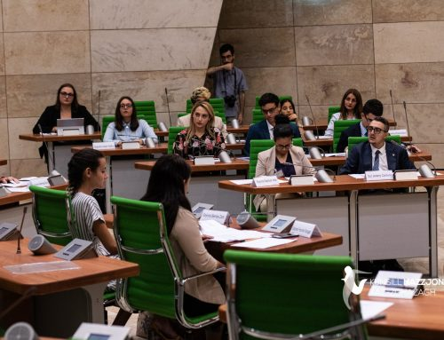 Activities on migration and democracy in Malta